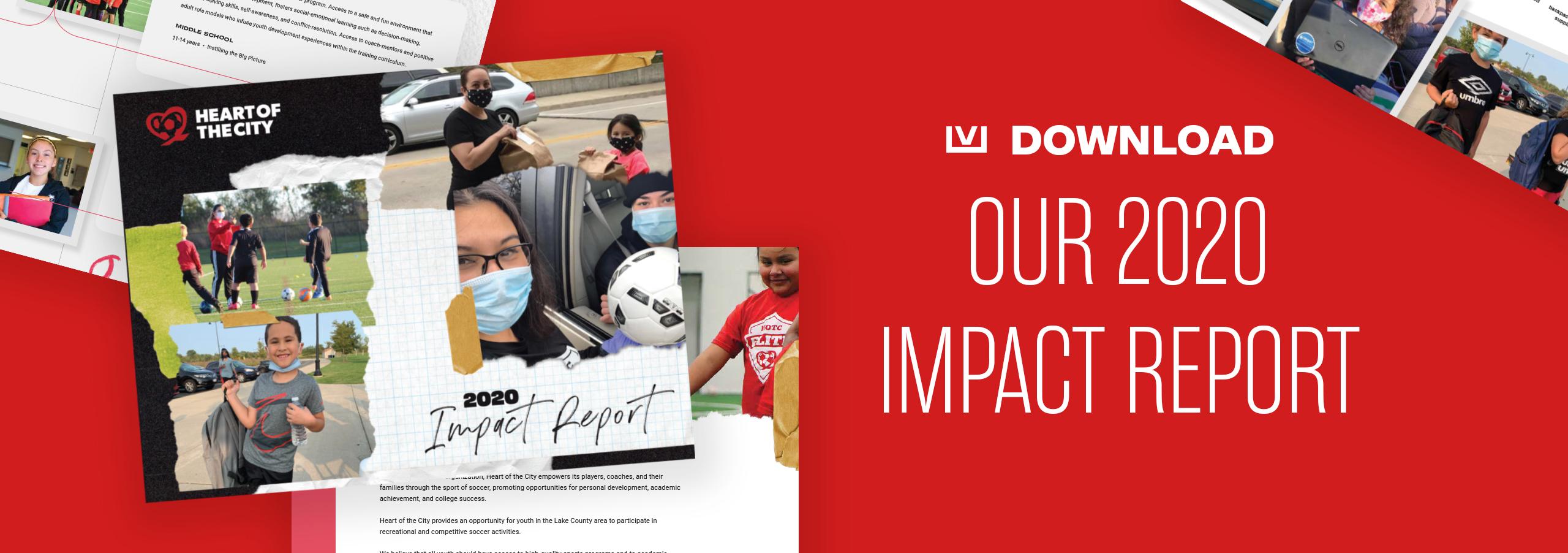 HOTC_2020_Impact_Report_Banner_Long